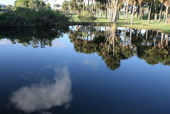 Reflection on a Lake, Florida