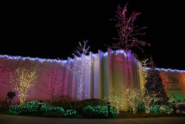 Festival of Lights, Morman Temple, DC